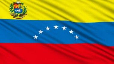 Bandeira venezuelana, com uma estrutura real de uma tela — Vídeo stock