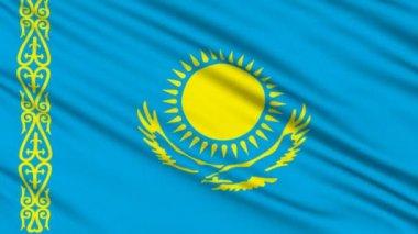 哈萨克旗子,与真正的组织结构的织物 — 图库视频影像