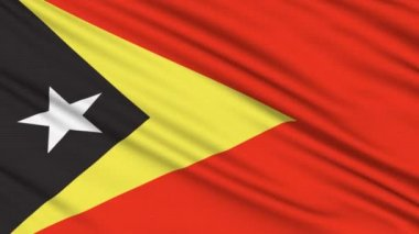 East Timor Flag, with real structure of a fabric — Stock Video