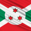 Burundi Flag, with real structure of a fabric — Stock Video