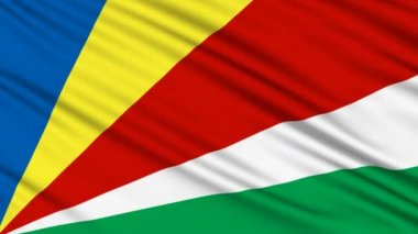 Seychelles Flag, with real structure of a fabric — Stock Video