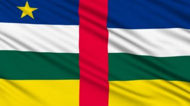 Central African Republic Flag, with real structure of a fabric — Stok video