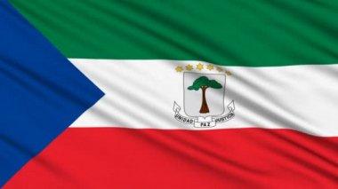 Bandera de guinea ecuatorial, con la estructura real de una tela — Vídeo de Stock