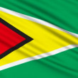 Guyana Flag, with real structure of a fabric - Stock Photo