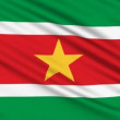 Suriname Flag, with real structure of a fabric — Stock Video
