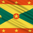 Grenada Flag, with real structure of a fabric — Stock Video