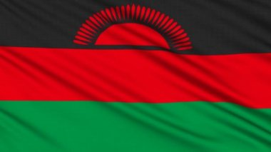 Malawi Flag, with real structure of a fabric — Stock Video