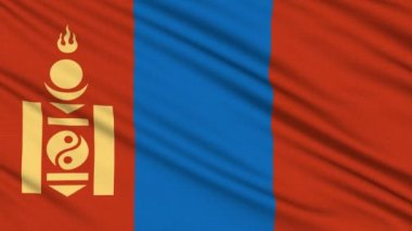 Vlag van mongolië, met echte structuur van een stof — Stockvideo