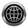 Globe icon silver, isolated on white background. — Stockfoto