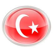 Turkije vlagpictogram, geïsoleerd op witte achtergrond. — Stockfoto
