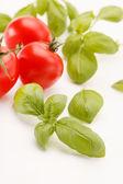 Tomatoes and basil — Stock Photo