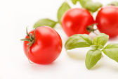 Tomatoes and basil — Stockfoto