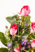 Nice flowers — Stock Photo