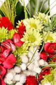 Beautiful Bouquet — Zdjęcie stockowe