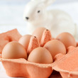 Stock Photo: Brown eggs