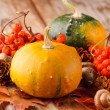 Harvested pumpkins with fall leaves — Stock Photo