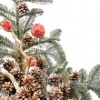 Christmas tree - Photo