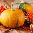 Harvested pumpkins with fall leaves — Stock Photo #14505511