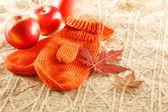 连指手套和叶子 — 图库照片