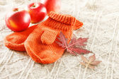Mittens and leaves — Stock Photo