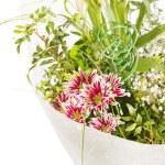 boeket van kleurrijke bloemen — Stockfoto #16952611
