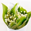 Lily-of-the-valley flowers — Stock Photo