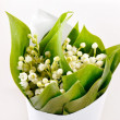 Lily-of-the-valley flowers — Stock Photo #16953999