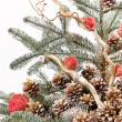 Christmas tree - Stockfoto
