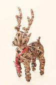 クリスマスの鹿 — ストック写真