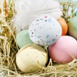 Easter chocolate eggs in the nest — Stock Photo #18760935