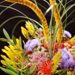 boeket van kleurrijke bloemen — Stockfoto #18944609