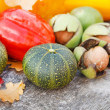 Autumn Pumpkin and Leaves - Stock Photo