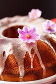 Iced taart — Stockfoto
