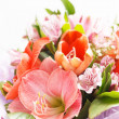 Flowers bouquet - Stock Photo