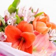 Flowers bouquet — Stock Photo #23981177