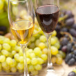 Wine sampling — Stock Photo #24213011