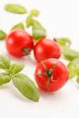Tomate y albahaca — Foto de Stock