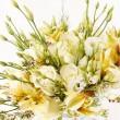 Beautiful flowers — Stock Photo #24821233