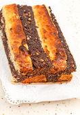 Des gâteaux de graines de pavot — Photo
