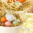 Easter chocolate eggs in the nest — Stock Photo #25194977