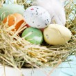 Easter chocolate eggs in the nest — Stock Photo #25195009