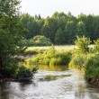 Foto Stock: Summer river