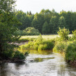 Stock Photo: Summer river