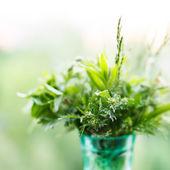 Letní tráva ve sklenici — Stock fotografie