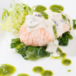 Salmon Fillet in Cream Sauce — Stock Photo #27539215