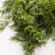 Fresh dill — Stock Photo #27580479