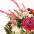 Bouquet of colorful flowers — Stockfoto