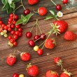 Red berries — Stock Photo #28778613