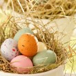 Easter chocolate eggs in the nest — Stock Photo #28811311