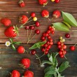 Red berries — Stock Photo #29006251
